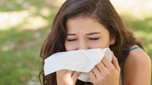 Misery: Many suffer from hay fever every summer.
