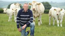 Neutral policy: Christy Comerford on his farm at Knockmahon, Co Kilkenny. Photo: Finbarr O'Rourke