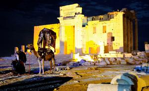 Camels are seen in front of the Temple of Bel at the historical city of Palmyra October 22, 2010. Islamic State seized full control of the historic city of Palmyra in central Syria on May 21, 2015, just days after it captured a provincial capital in neighbouring Iraq, suggesting momentum is building for the ultra-hardline group. REUTERS/Omar Sanadiki