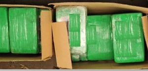 Haul: The drugs seizure by gardaí was one of the biggest drugs busts of the year