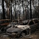 Destroyed cars are seen next to burnt bushland in the village of Mogo, Australia, January 8, 2020. REUTERS/Alkis Konstantinidis