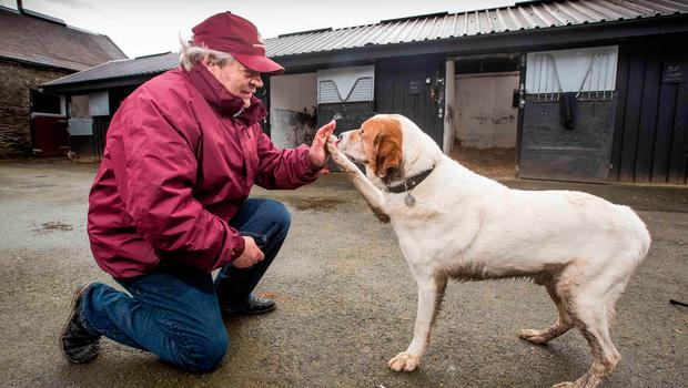 Trainer 'Mouse' Morris with his dog EJ. Photo: INPHO