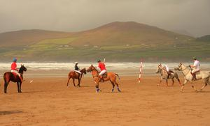 Inch Strand, Co. Kerry - by Peter McKernan