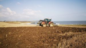 Life goes on: The McCulloughs ploughed non-stop last week on their farm in Meath