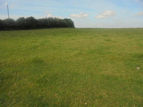 The Laois farm at Ballypickas that's guided at €8,000/acre.