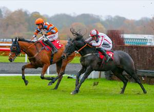 UP AND DOWN: Master Tommytucker (left) can prevail at Huntingdon