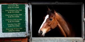 File photo dated 01-03-2012 of File photo dated 24/2/2010 of Kauto Star in his stable during the stable visit at Manor Farm, Ditcheat, Somerset
