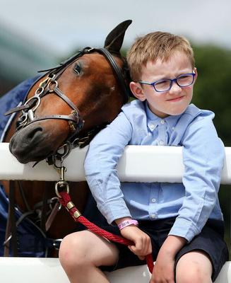 James Derwin (7) from Athlone takes a break with Yorkie a 128cm Jumping Pony at the RDS Dublin Horse show Gerry Mooney