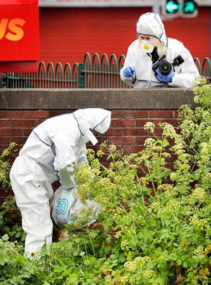 Forensics officers search for evidence. Photo: Steve Humphreys
