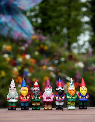 Gnomes designed by various celebrities including Elton John's  on display at the RHS Chelsea Flower Show, London.