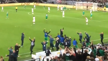 The Ireland bench goes mad after John O'Shea's dramatic goal in Gelsenkirchen