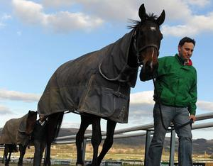 Trainer Henry de Bromhead leads Sizing Europe, alongside Michael Murray, ahead of the 2013 Cheltenham Racing Festival. Picture: Stephen McCarthy/Sportsfile.