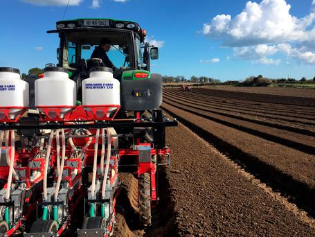 Conor OMalley, Farm Manager of Meade Potato Company plants Nairobi and Nominator varieties of early carrots in Termonfeckin, Co. Louth. Photo: Jeni Meade.