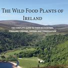 'The Wild Food Plants of Ireland' by Tom Curtis and Paul Whelan (Orla Kelly Publishing, €30)