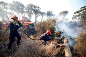 Firefighters spray embers to prevent a flare up of a bushfire  that burnt several houses and threatened vineyards in Somerset West, near Cape Town, South Africa January 4, 2017. REUTERS/Mike Hutchings