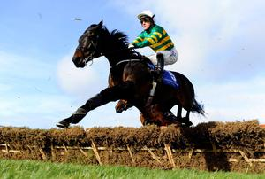 Tony McCoy riding Plinth in action at Leopardstown racecourse