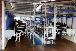 DeLaval MidiLine 20 unit parlour installed in June 2018
