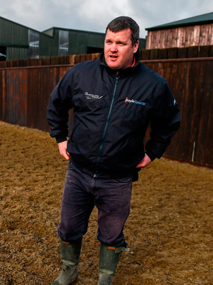 Trainer Gordon Elliott at his stables ahead of the Cheltenham Festival. Picture credit: Ramsey Cardy / Sportsfile