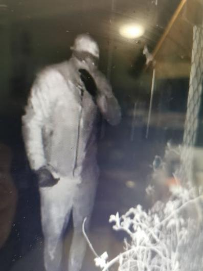 The suspects caught on camera at the animal rescue centre