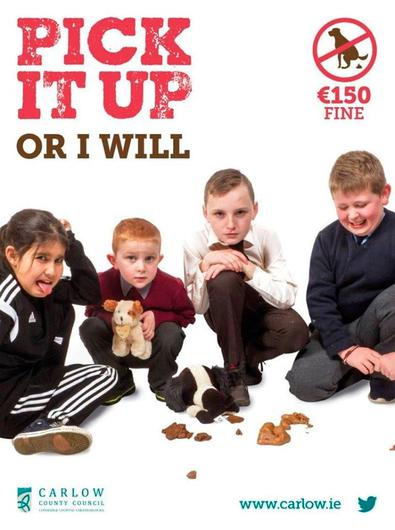 A baby and young children feature in Carlow county council's striking campaign on dog fouling