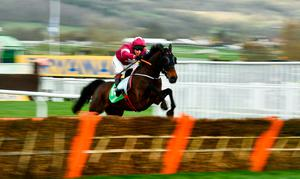 Apple's Jade, with Richard Johnson up, jump the last, first time round, during the Paddy Power Stayers' Hurdle on Day Three of the Cheltenham Racing Festival. Photo: David Fitzgerald/Sportsfile