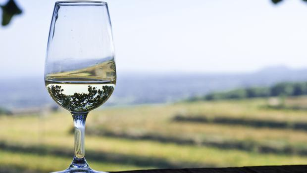 Adelaide Hills produces some of Australia's top wines