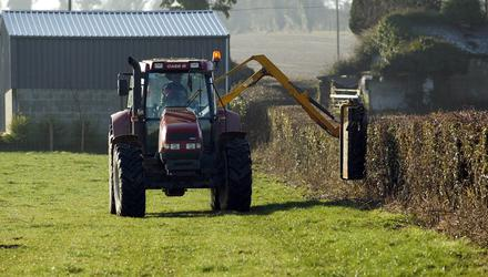 Currently it is illegal to cut, remove/destroy hedgerows and burn vegetation in our uplands between March 1 and August 31 in order to protect breeding birds. Stock Image