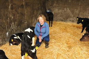 Jenny Young checks out the new calves. Photo Roger Jones.