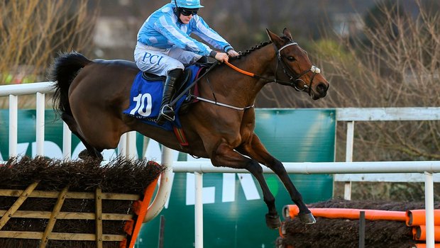 1 February 2020; Honeysuckle, with Rachael Blackmore up, jumps the last on their way to winning the PCI Irish Champion Hurdle during Day One of the Dublin Racing Festival at Leopardstown Racecourse in Dublin. Photo by Matt Browne/Sportsfile