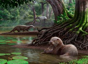 An artist's impression of the wolf-sized prehistoric otter studied by scientists Photo: Mauricio Anton/PA Wire