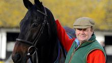 Nicky Henderson with Sprinter Sacre, says he will not run the 2013 Queen Mother Champion Chase victor for a first time since he pulled up at Kempton the following Christmas if the ground does get too testing at Ascot on Saturday
