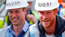William and Harry on DIY SOS on BBC