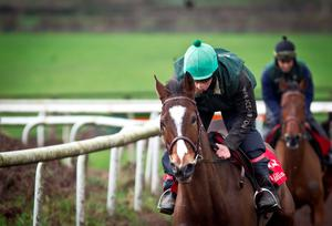 Vautour is one of the excellent horses in the top quality field of the King George VI at Kempton (Racing Post)