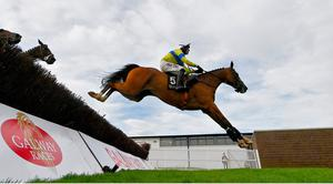 Polished Steel, with Robbie Power up, clears the fourth fence on their way to winning the Rockshore Novice Steeplechase on day four of the Dublin Summer Racing Festival at Ballybrit Racecourse in Dublin. Photo by Harry Murphy/Sportsfile