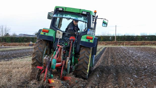 JP Fenlon from Ballylinan ploughing in the senior conventional at the Portlaoise & District ploughing match at Ballyfin, Co Laois. Photo: Alf Harvey