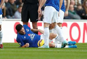 Everton's Gareth Barry is injured during their English Premier League match against Sunderland at the Stadium of Light. Photo credit: REUTERS/Andrew Yates