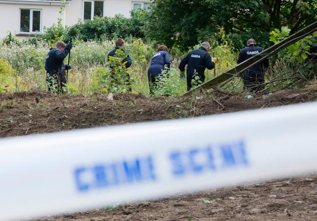 Gardaí investigating the disappearance of Trevor Deely searching a site in Chapelizod in Dublin. Photo: Fergal Phillips