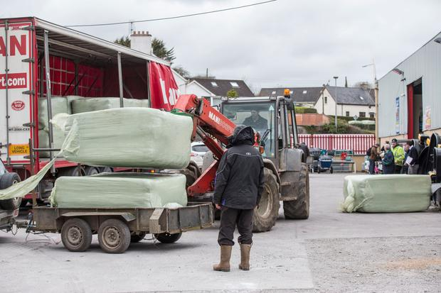 The first shipment of fodder arriving in Buttevant County Cork for farmers. Pic:Mark Condren.