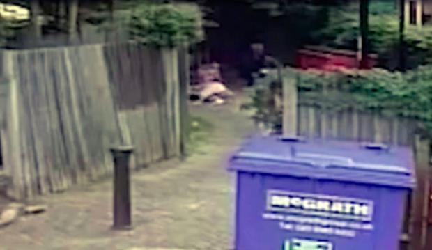 The pensioner dislocated her shoulder as a result of the attack. Photo: Screengrab/Croydon Police
