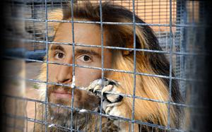 """Fabio Borini's agent thinks his client is like a """"lion in a cage"""". So..."""