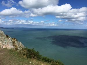 View from the top of Bray Head, Co. Wicklow, as submitted by reader Nichola Collier.