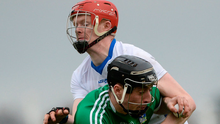 Limerick's Pat Ryan tussels with Séamus Flanagan of Waterford during the Co-Op Superstores Munster Senior Hurling League First Round match. Photo: Piaras Ó Mídheach/Sportsfile