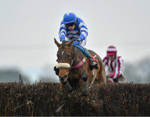 Liberty Counsel, with Ben Dalton up, on the way to winning the Ladbrokes Irish Grand National Steeplechase. Photo: Sportsfile
