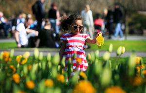 Lilly Murphy from Ringsend waters the flowers with her water container enjoying the good weather in Saint Stephens Green, Dublin. Photo: Gareth Chaney Collins