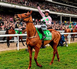 'Annie Power would have been entitled to take the hump over the presumption that only one horse mattered when it came to the Champion Hurdle'. Photo: Cody Glenn / Sportsfile