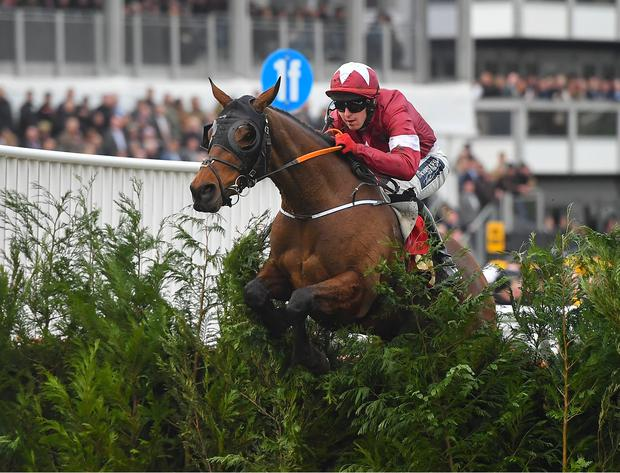 Gordon Elliot is delighted with how Tiger Roll has recovered from injury ahead of his Grand National bid. Photo by Seb Daly/Sportsfile