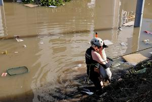 A rescue worker carries the body of a dead dog from a flooded residential area due to Typhoon Hagibis, near the Tama River in Kawasaki, Japan, October 13, 2019. REUTERS/Kim Kyung-Hoon