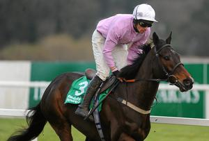 Solwhit, with Davy Russell up, during the The paddypower.com iPhone App December Festival Hurdle. Picture credit: Stephen McCarthy / SPORTSFILE