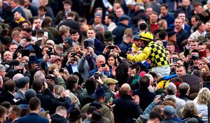 Paul Townend on board Al Boum celebrates victory in the Magners Cheltenham Gold Cup Chase at last year's Cheltenham Festival. Photo: PA