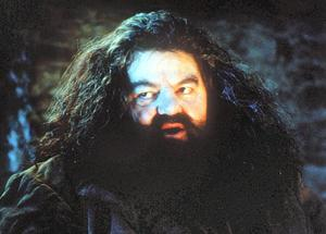 Robbie Coltrane, pictured here playing the role of Rubeus Hagrid in the 'Harry Potter' series, was taken to hospital after suffering from severe flu-like symptons onboard a British Airways flight from London to Orlando